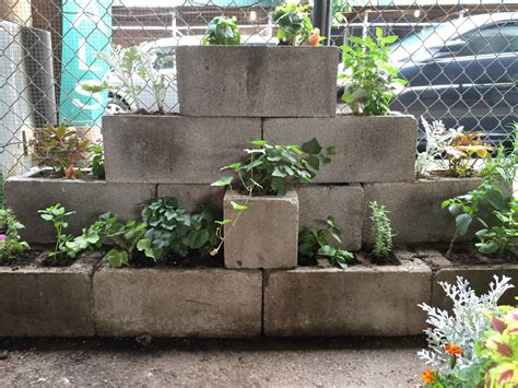 concrete block planters and raised beds improvised