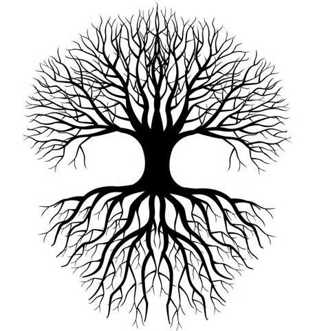 coloring page of tree with roots simple tree roots coloring coloring pages tattoos