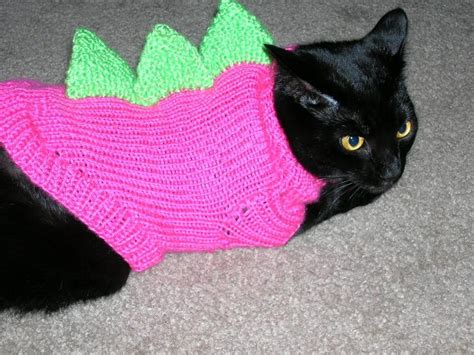 knitting pattern jumper for cat you have to see dino cat sweaters on craftsy
