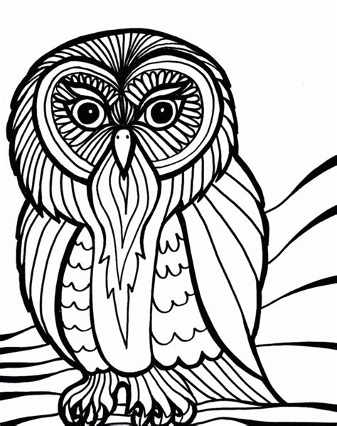10 difficult owl coloring page for adults owl coloring pages for adults realistic and hard to color