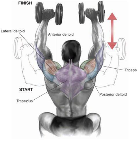 bench press neck injury shoulders bo dy com