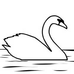 Bluebird Coloring Page Birds – Clip Art For Teachers Parents  sketch template