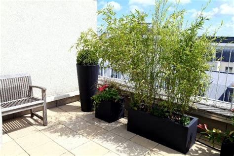 Balcony Shade Privacy Screens by Bamboo Balcony Privacy Screen Ideas With Plants Carpets
