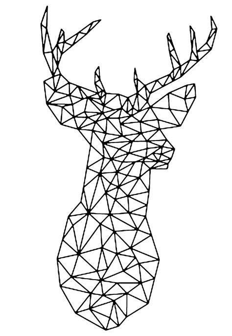 Vectorial deer - Deers Adult Coloring Pages