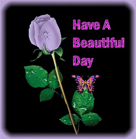 beautiful day pictures pictures for whatsapp facebook