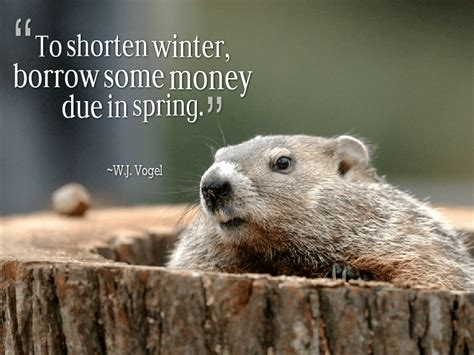 groundhog day phrase groundhog day quotes