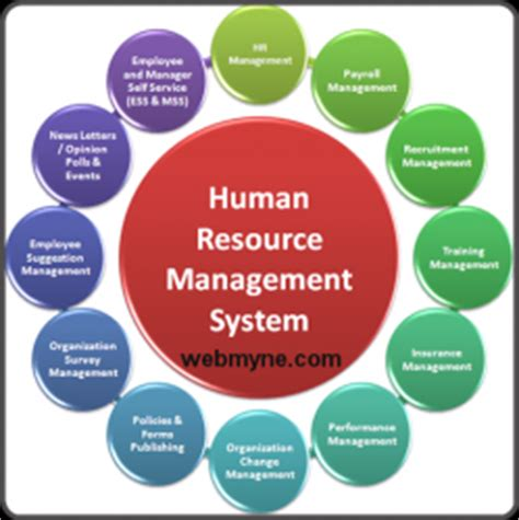 Top Mba In Human Resources by Human Resources Management Process