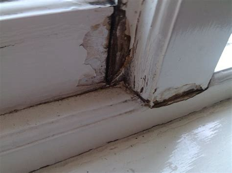 fix  rotted window frame  basic woodworking