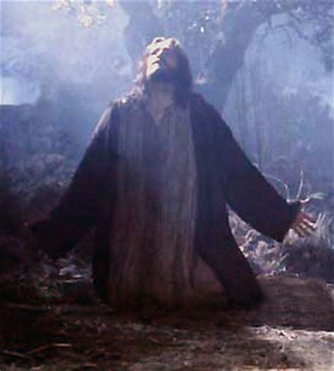 the last hours of jesus from gethsemane to golgotha books according to your will