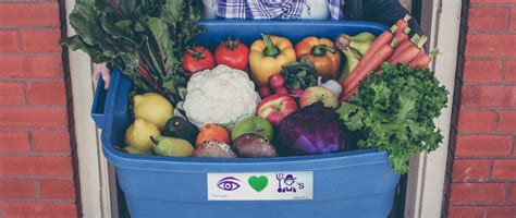 Food Boxes Delivered To Your Door by Organic Food Delivery Toronto Vegetable Grocery Box