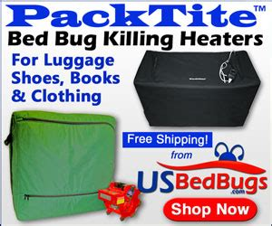 baby powder and bed bugs bed bugs can kerosene kill bed bugs