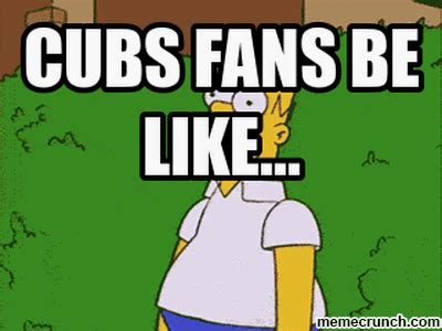 Cubs Fan Meme - cubs fans be like