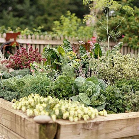 Planning A Vegetable Garden How To Plan A Vegetable Garden