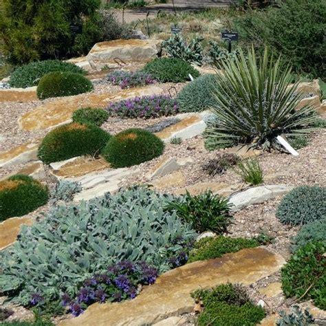 Rock Gardening Rock Wall Gardening Ideas Saleros Club Rock Garden Plant Crossword Clue