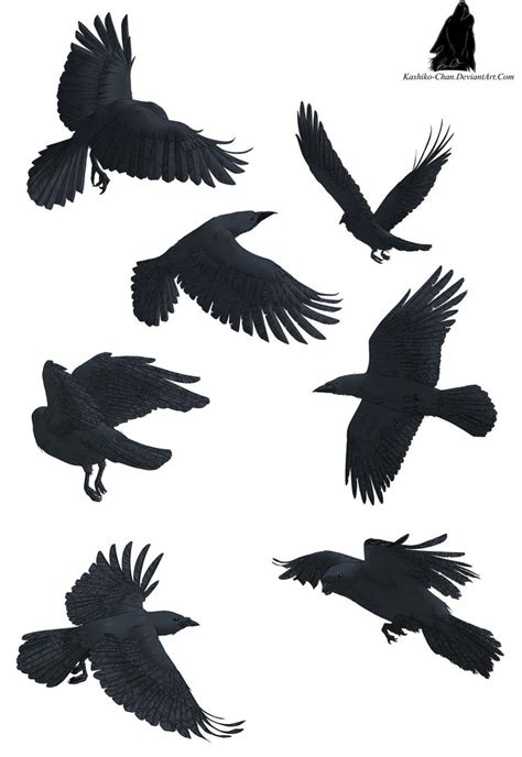 crow tattoo designs on ravens tattoos and crows