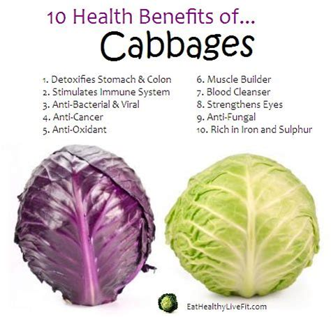 Cabbage Medicinal And Cosmetic Value by 10 Health Benefits Of Cabbage Alternative Remedies