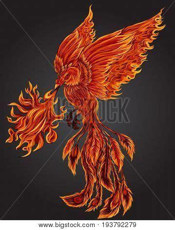 phoenix tattoo commerce city images illustrations et images vectorielles de fire bird