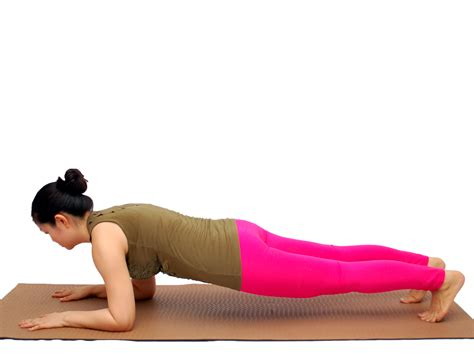plank excercises try the 30 day plank challenge for beginners plank