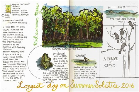 layout design nature jan blencowe s sketchbook hypothesis 7 steps to creating