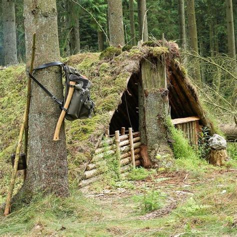 bush craft what is bushcraft the 5 skills you need to master to