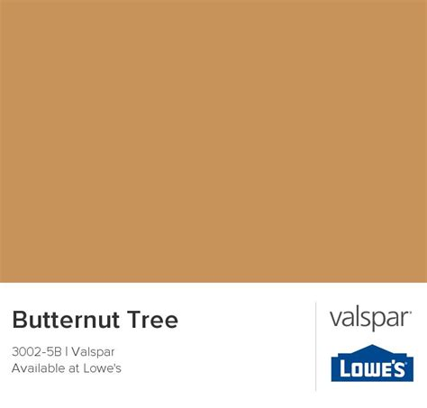valspar paint color chip butternut tree on discover the best trending front door