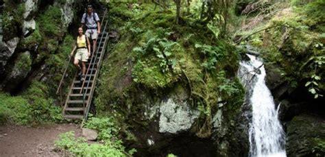 wandlen schwarz wandelen in het gevarieerde landschap het zwarte woud
