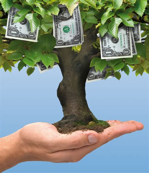 tree farming growing for profit