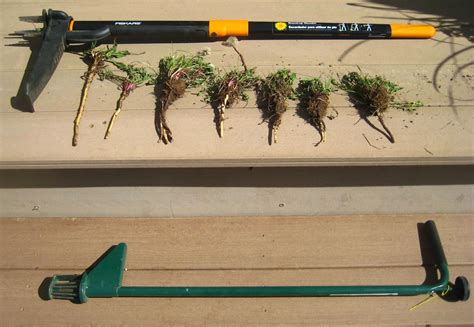 Product review: Weed pulling tools   Susan's in the Garden