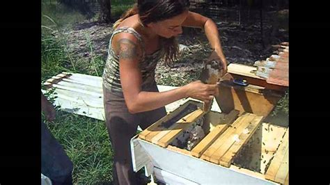 backyardhive new dvd alternative beekeeping using the top top bar hive split and cross comb removal tutorial wmv