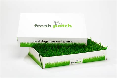 real grass potty cyber monday for the dogs fresh patch real grass potty will be 50
