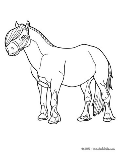 hello pony coloring pages pony picture coloring pages hellokids com