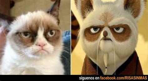imagenes chistosas de kung fu panda memes kung fu panda