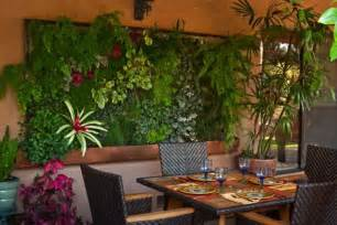 wall garden indoor living walls and vertical gardens living