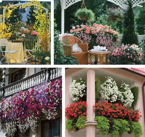 immagini di balconi fioriti balconi fioriti e terrazzi fioriti come progettarli in