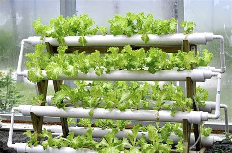 Vertical Hydroponic Garden Plans Hydroponic Gardening A Garden Season Guide To Getting Started