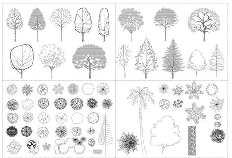 tree templates for autocad autocad tree collection architectural resources
