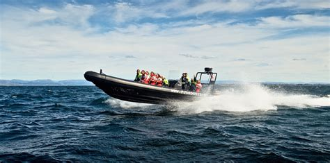 rib boat tour tromso rib boat fjord cruise from bergen fjord tours