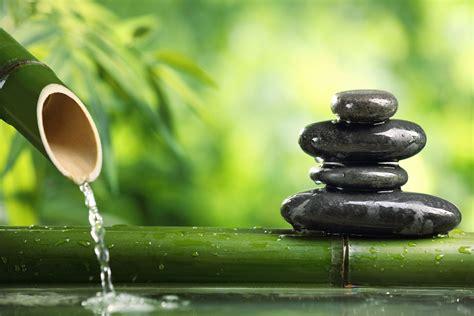 bamboo evergreen water green stems stones black flat