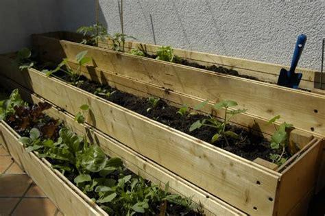 orto sul terrazzo come si fa fare l orto sul balcone non sprecando acqua non sprecare