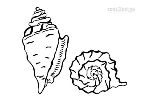 seashell coloring pages preschool printable seashell coloring pages for kids cool2bkids
