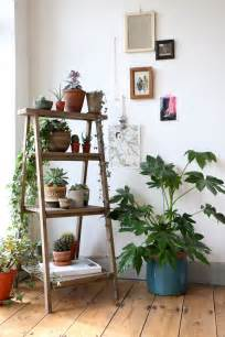Home Decoration Plants 12 Popular Home D 233 Cor Trends For 2016 Zing By Quicken Loans Zing By Quicken Loans