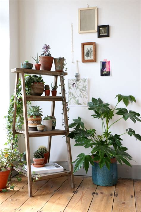 home decor with plants 12 popular home d 233 cor trends for 2016 zing blog by
