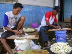 Produk Ukm Bumn Pangsit Bawang kwt makmur ukm umkm desa harjowinangun barat
