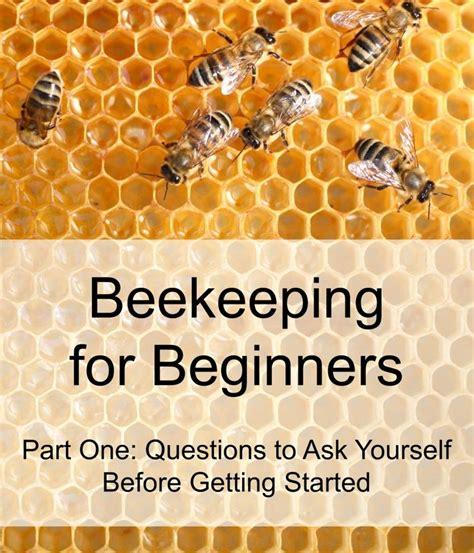 beekeeping for beginners homesteading animal edition