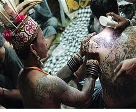 tato dayak community overview of the tribal culture of west kalimantan