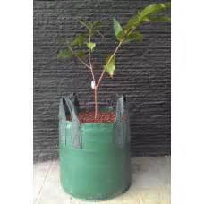 Jual Planter Bag 75 Liter perlengkapan pertanian