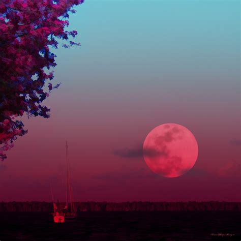 pink moon meaning full moon names and meanings everything soulful