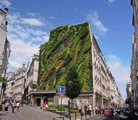 sustainable green wall facades vertical garden