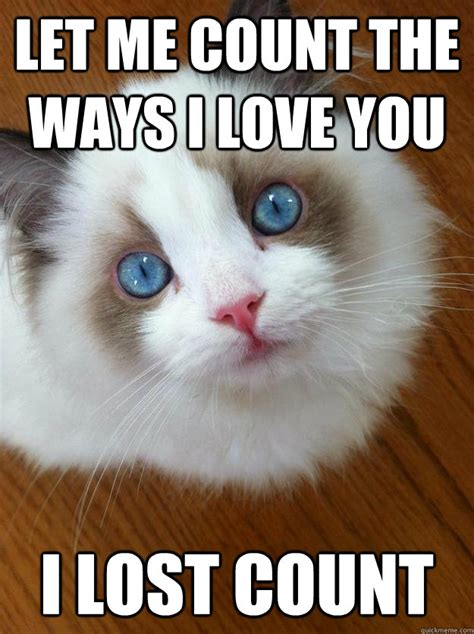 Cute I Love You Meme - image gallery kitty loves you meme