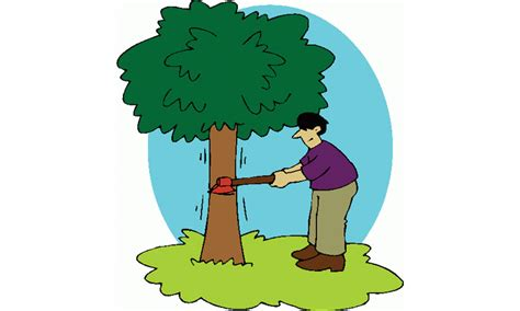 do not cut the tree to get the fruit environment save the big friendly tree newspaper